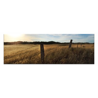 Artist Lane Golden Grass by Andrew Brown Photographic Print on Canvas in Yellow
