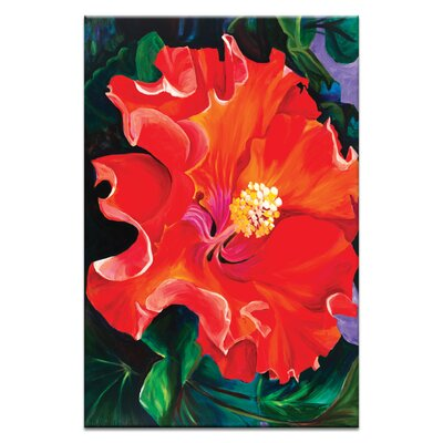 Artist Lane 'Hibiscus' by Shani Alexander Art Print on Wrapped Canvas