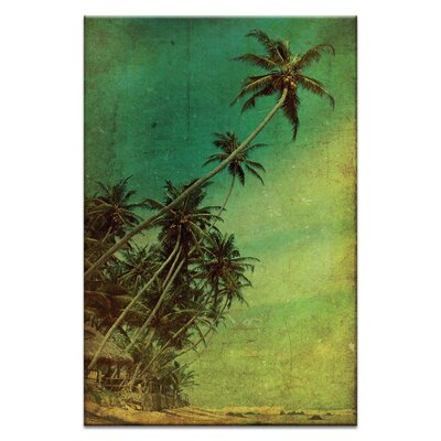 Artist Lane 'Tropical Vestige' by Andrew Paranavitana Photographic Print Wrapped on Canvas