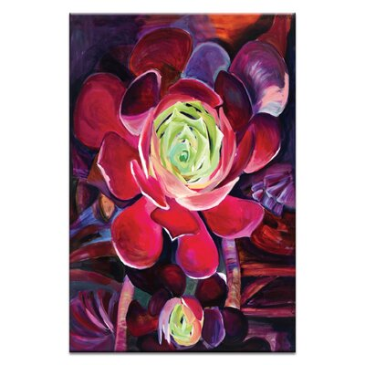 Artist Lane 'Succulent' by Shani Alexander Art Print on Wrapped Canvas