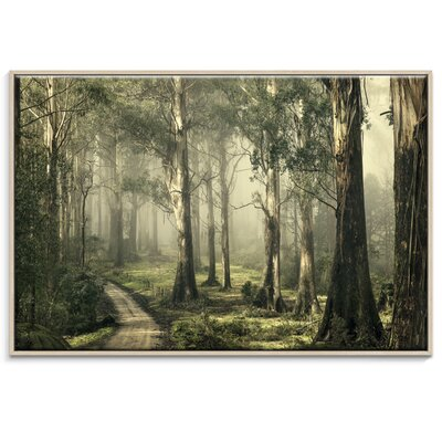 Artist Lane 'Silently Still' by Andrew Paranavitana Photographic Print Wrapped on Canvas