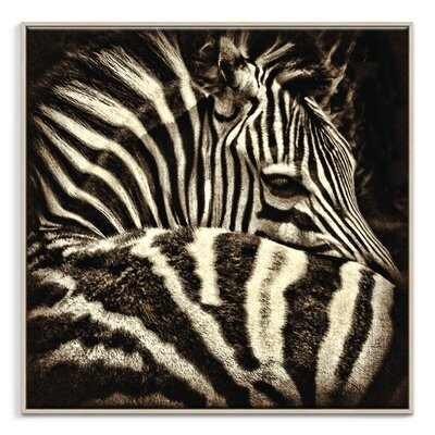 Artist Lane 'Comfort' by Andrew Paranavitana Framed Photographic Print on Wrapped Canvas