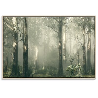 Artist Lane 'Shroud' by Andrew Paranavitana Framed Photographic Print on Wrapped Canvas