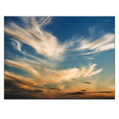 Artist Lane 'Wisp' by Andrew Paranavitana Photographic Print Wrapped on Canvas
