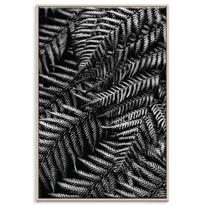 Artist Lane 'Silvern' by Andrew Paranavitana Framed Photographic Print on Wrapped Canvas