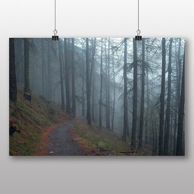 Alpen Home 'Forest Pathway' Photographic Print