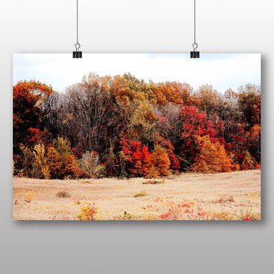 Alpen Home Autumn Forest Edge Photographic Print