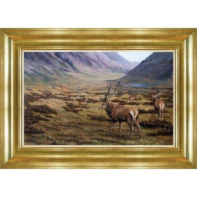 Alpen Home Gannett Deer Family Framed Photographic Print