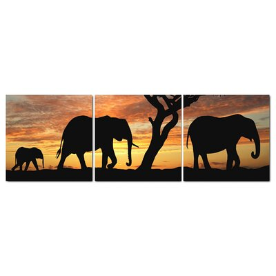 Fjørde & Co Sabana Elephant 3-Piece Wall Art Set