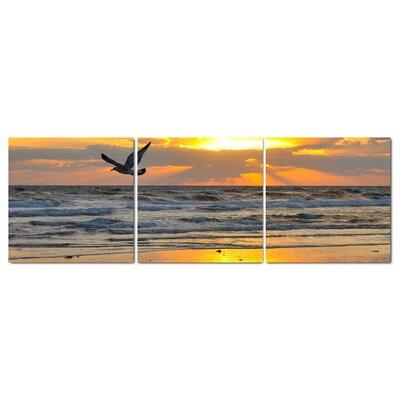 Fjørde & Co Bird In The Beach 3-Piece Wall Art