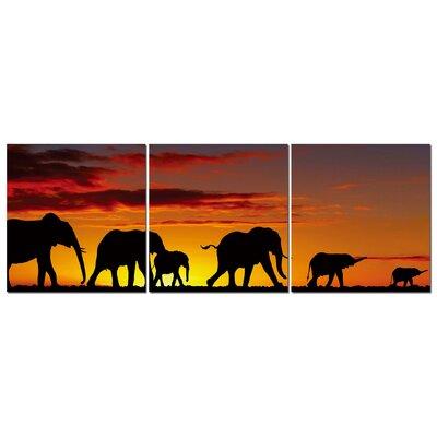 Fjørde & Co Elephant Savanna 3-Piece Wall Art