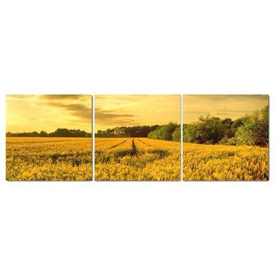 Fjørde & Co Wheat Field 3-Piece Wall Art