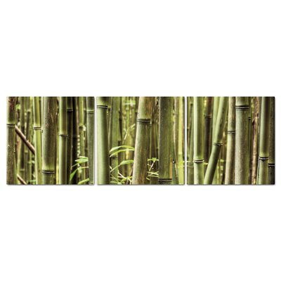 Fjørde & Co Green Bamboo 3-Piece Wall Art