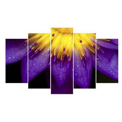 Fjørde & Co Purple 5-Piece Wall Art Set