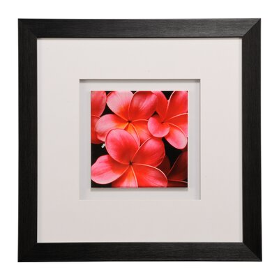 All Home Floral Framed Photographic Print