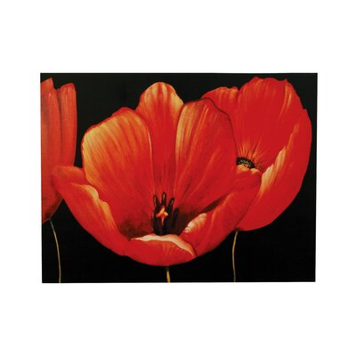 All Home Poppy Graphic Art on Canvas