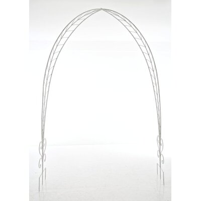 All Home Javid Rose Arch