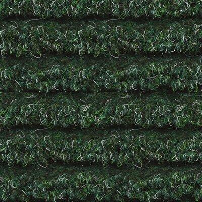 Home Etc Duoridius Green Area Rug