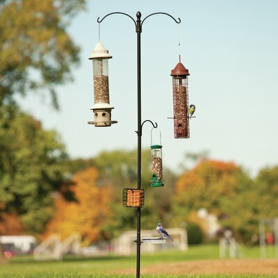 Home Etc Bird Feeding Station in Black