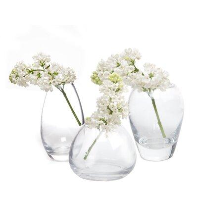 House Additions George 6 Piece Vase Set
