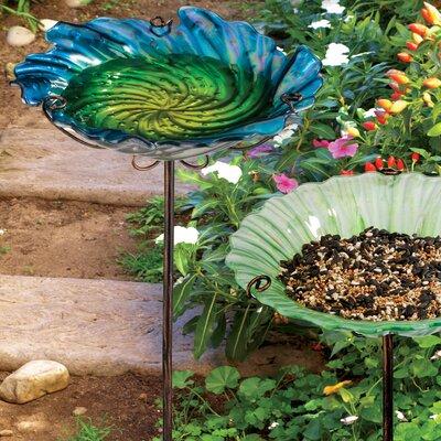 House Additions Bird Bath