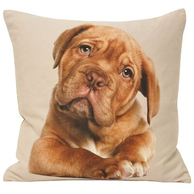 House Additions Animal Cushion Cover