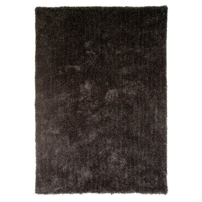 House Additions Grande Vista Black Area Rug