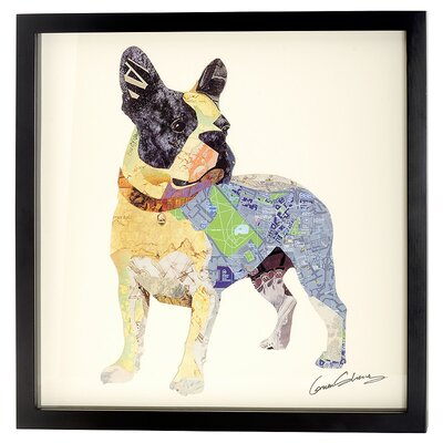 House Additions French Bulldog Collage Picture Framed Graphic Art