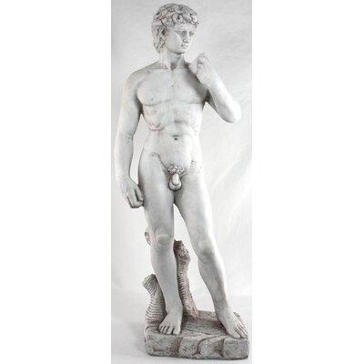House Additions David Statue