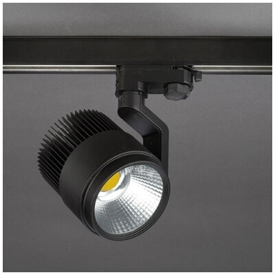 House Additions Action 1 Light Ceiling Spotlight