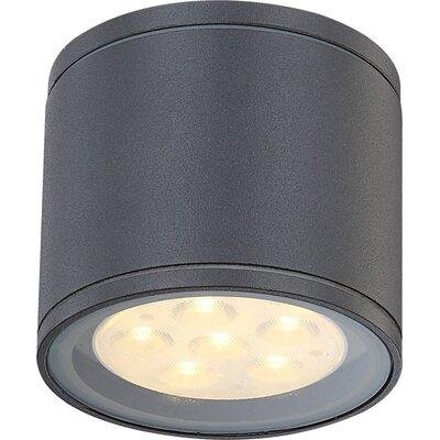 House Additions Carpo 1 Light Flush Ceiling Light
