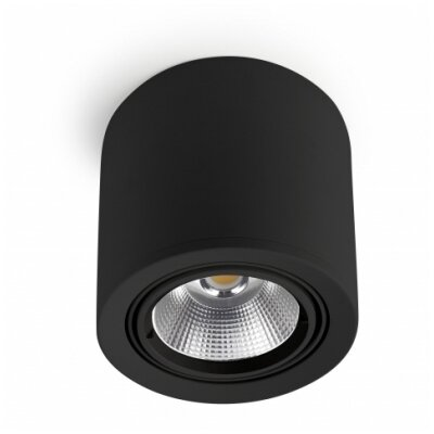 House Additions Exit Downlight