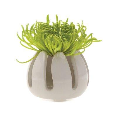 House Additions Gideon Vase