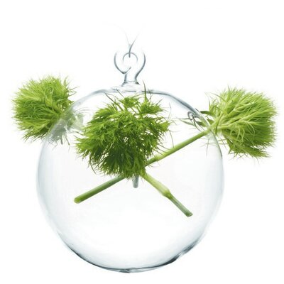 House Additions Hana Hanging Sphere Vase