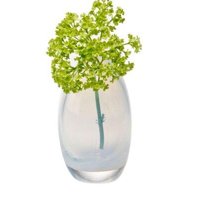 House Additions Ligne Vase