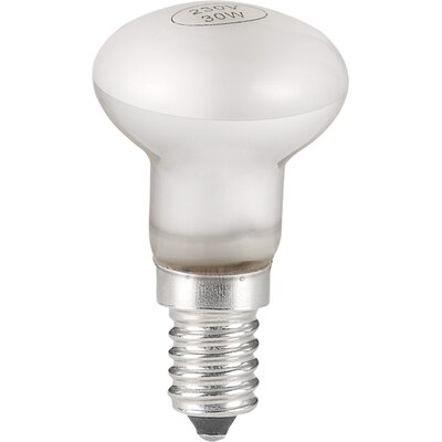House Additions E14/European Halogen LED Light Bulb