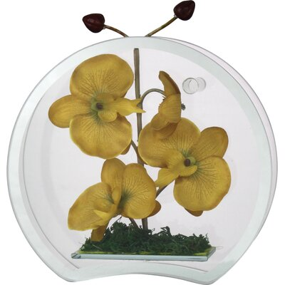 House Additions Yellow Orchid Accent