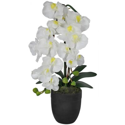 House Additions Cloud Faux Orchid Accent