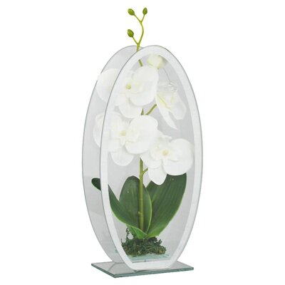 House Additions Miles Faux Orchid