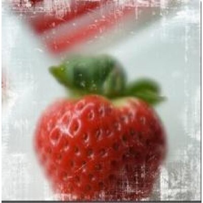House Additions Fraise Zoom Wall Decor