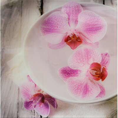 House Additions Orchidee Coupe Wall Decor