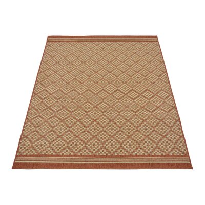 House Additions Plano Terra Area Rug