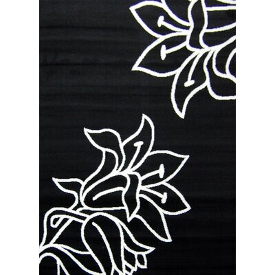 House Additions Black and White Area Rug