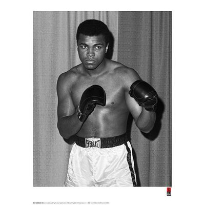 House Additions Muhammad Ali Stance Photographic Print