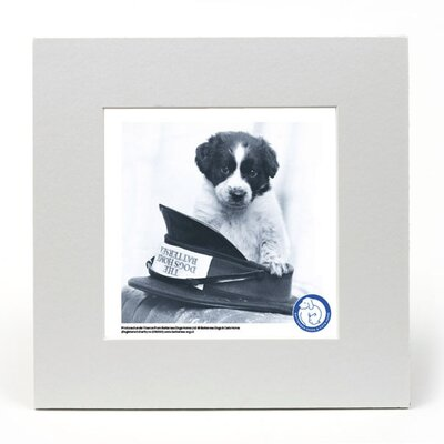 House Additions Battersea Dogs and Cats Home Hat off to Battersea Mounted Photographic Print