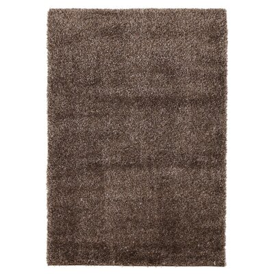 House Additions Carpet in Brown