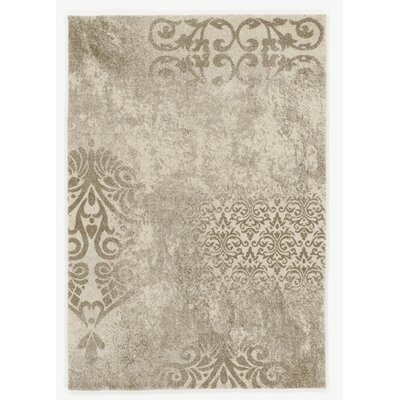 House Additions Cream/Beige Area Rug