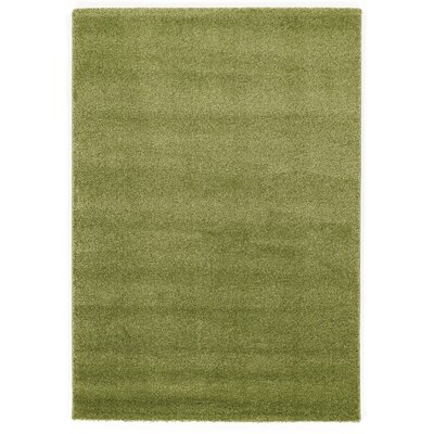 House Additions Green Area Rug