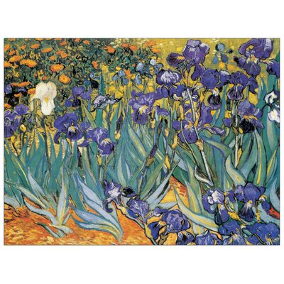 House Additions 'Irises' by Van Gogh Art Print Plaque