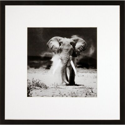House Additions Elephant Framed Photographic Print